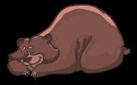 bear-2079672__480